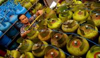 Kurangi Impor LPG, KESDM Imbau Masyarakat Gunakan Kompor Listrik