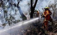 435 Hektare Lahan di Lereng Gunung Arjuno Terbakar