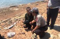 Mayat Janin Bayi Tanpa Kepala Ditemukan di Pinggir Pantai