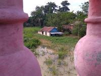 Sungai Batanghari Meluap, 4 Kecamatan di Jambi Terendam Banjir