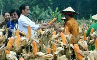 Jokowi Luruskan Data soal Impor Jagung dalam Debat Kedua