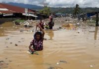 1.300 KK di Jayapura Terdampak Banjir dan Longsor