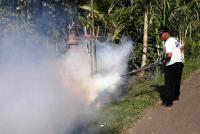 Cegah Penyakit DBD, Caleg Perindo Fogging di Jembrana