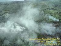 Sudah 8 Hari, Kebakaran Taman Wisata Alam Dumai Belum Padam