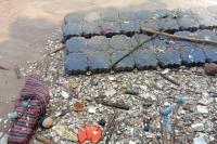 Sungai Ciliwung Menjadi Lautan Sampah