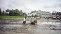 Hasil Pilpres Ditetapkan, Serikat Petani Indonesia: Fokus pada Agenda Kedaulatan Pangan
