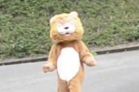 Latihan Hewan Kabur, Karyawan Kebun Binatang di Jepang Pakai Kostum Singa