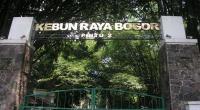 Jumlah Pengunjung Kebun Raya Bogor Anjlok Akibat Kelangkaan Lahan Parkir