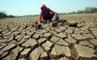 35 Persen Wilayah Indonesia Masuki Musim Kemarau, Waspada Bencana Kekeringan!