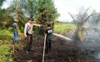 4,5 Hektare Lahan di Jambi Terbakar