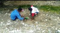 Musim Kemarau, Warga Sragen Gali Bebatuan di Sungai Kering Cari Air Bersih