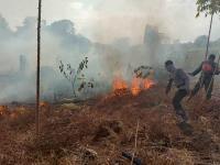 15 Korporasi Jadi Tersangka Karhutla di Kalbar