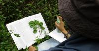 99 Jenis Tanaman Medis di Tapos Berhasil Dikumpulkan
