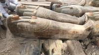 Mesir Temukan Gudang Penyimpanan Peti Mati Mumi