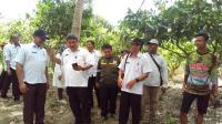 HPS ke-39, Kementan Pamerkan Teknologi Pengolahan Kakao dan Pompa Air Berbasis 4.0