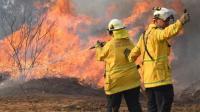 Polisi Duga Kebakaran Hutan di Queensland Akibat Ulah Anak-Anak