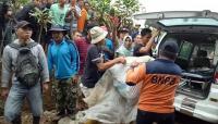 Wali Kota Pagaralam Imbau Warga Jauhi Habitat Harimau Sumatera