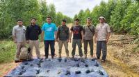 Petugas BBKSDA Temukan Ratusan Jerat Harimau di Hutan Riau