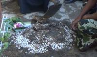 Warga Bongkar Makam Bayi di Rumah Kontrakan Toto Santoso di Sleman