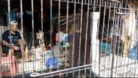 Penjual Kelelawar di Pasar Burung Solo Tak Terpengaruh Isu Virus Korona