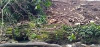 Sultan Kasepuhan Cirebon Kecewa Situs Keramat Matangaji Dirusak