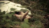 Siswa SMP Ditemukan Tewas Terkubur Separuh Badan di Perkebunan Karet