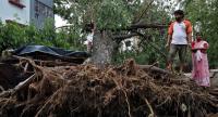 Gelombang Panas Landa Bagian Utara India, Suhu Capai 50 Derajat Celcius
