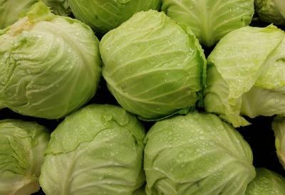 Viral Video Sayur Kol, Ini 4 Manfaat Makan Kol