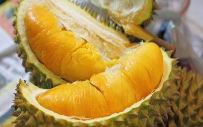 Mengulik Keunikan Durian Setan Asal Aceh Selatan