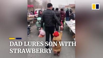 Lucu Banget! Seorang Ayah Pancing Anaknya yang Rewel dengan Stroberi
