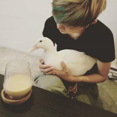 Iseng Tetaskan Telur Balut, Wanita Ini Dapatkan Bebek Cantik