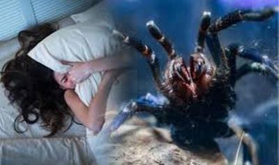 5 Penangkal Mimpi Buruk
