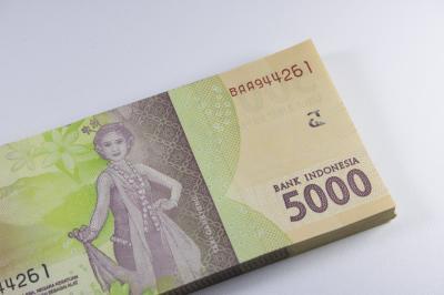 Pemerintah Alokasikan Dana Abadi Kebudayaan Minimal Rp5 Triliun