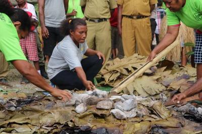 Mengenal Tradisi Barapen di Tanah Papua, Memasak untuk Kebersamaan