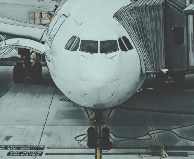 Tiket Mahal, Pemudik Mulai Tinggalkan Pesawat