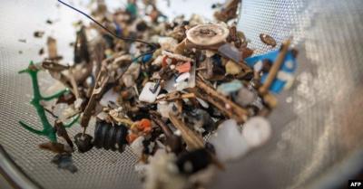 Riset Ungkap Manusia Konsumsi Plastik Seberat Kartu Kredit Setiap Pekan