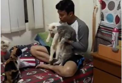 Video Kocak Nikahkan Kucing, Netizen: Semoga Awet Gilanya Ya!