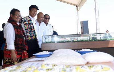 Garam Lokal 1,1 Juta Ton dan Impor 3,7 Juta Ton, Jokowi: Jauh Sekali