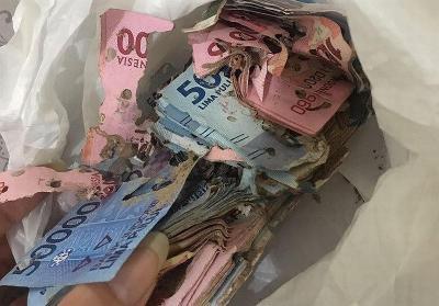 Uang Rp10 Juta Dimakan Rayap, BI: Simpan di Bank!