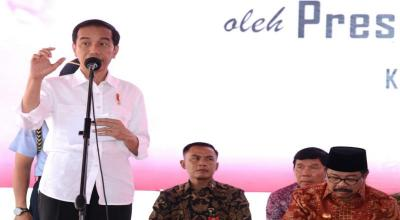 Presiden Jokowi: Insentif Pajak Bukan Satu-satunya Cara Tingkatkan Daya Saing