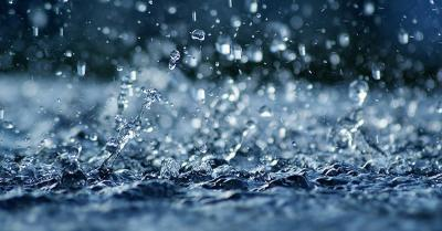 Sains dalam Alquran, Mahluk Hidup Tersusun dari Air