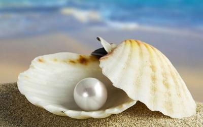 Ini Bedanya Perhiasan Mutiara Air Laut dengan Air Tawar