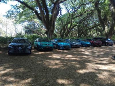 Daftar Mobil Listrik yang Telah Dijual di Indonesia