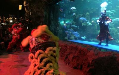 Aksi Barongsai Menyelam dalam Air Rayakan Imlek, Usir Setan atau Ikan?