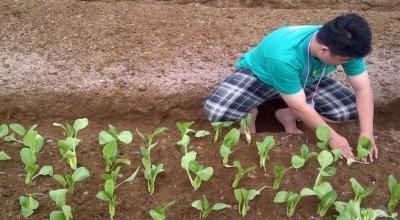 4 Langkah Menuju Pertanian Modern, Termasuk Pemanfaatan Teknologi