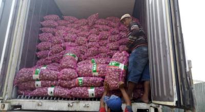 Kemendag Cek Rekam Jejak Keuangan Perusahaan Importir Bawang Putih