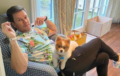 Mark Wahlberg: Pembunuhan George Floyd Begitu Memilukan