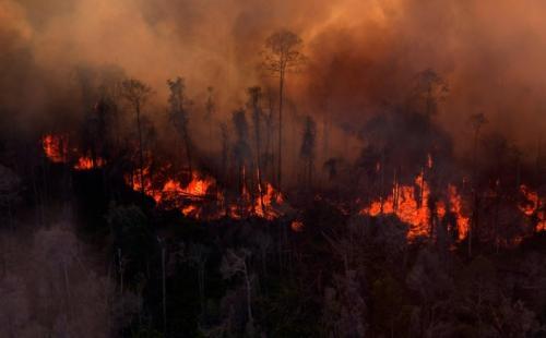 Ratusan Pendaki Terjebak Kebakaran Hutan Lawu