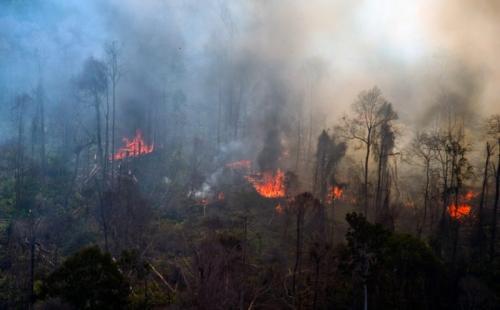 Riau Diperkirakan Kirim Asap Kebakaran Hutan ke Jambi